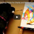 Dieser Hund macht Picasso Konkurrenz und pinselt wie ein junger Gott.