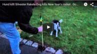 Hund killt Silvesterrakete und kommt mit dem Leben davon. http://www.hundeportal.de/videos/hund-killt-silvesterrakete/