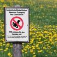Erste Anzeichen für jedwede Vergiftung sind heftiger Speichelfluss, Zittern, Hecheln, Muskelkrämpfe, erhöhte Körpertemperatur oder Lähmungserscheinungen. Keinesfalls sollte versucht werden, den Hund zum Erbrechen zu bringen, denn ätzende Substanzen können die […]
