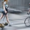Viele behaupten einen Hund in der Großstadt zu halten wäre für Hund und Halter ein Unding. Doch es ist nur eine Herausforderung. Natürlich muss erheblich mehr Rücksicht genommen werden, wenn […]