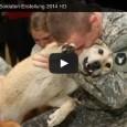 Compilation 2014 – Hunde begrüßen ihre Herrchen, die aus dem Auslandseinsatz wiederkommen