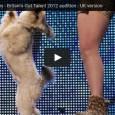 Tanzender Hund in einer Talentshow – Tierquälerei oder Spaß für den Hund?