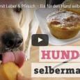 Hundeeis an Leber und Pfirsisch – Ein Gedicht Kein Witz! Ihr Hund wird es lieben. Probieren Sie es an den heißen Tagen selbst aus…