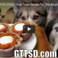 Hier wird Schritt für Schritt erklärt, wie man einen Kürbiskuchen-Snack für seinen Hund herstellt. Garantiert gesund und scheinbar ganz lecker…