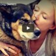 Hier ein paar coole und hilfreiche Tricks für den Hundebesitzer von heute. Viel Spaß beim Ausprobieren!