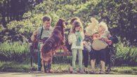 Der Hund dürfte wohl zu den beliebtesten Haustieren überhaupt zählen. Schließlich ist jeder Hund ein treuer und liebevoller Begleiter durchs Leben, der dem Menschen die Zuneigung, die er selbst erhält, […]